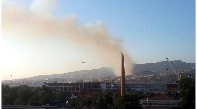 Son Dakika : İzmir'de orman yangını çıktı!